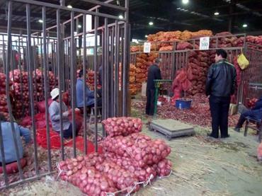 Market_onion
