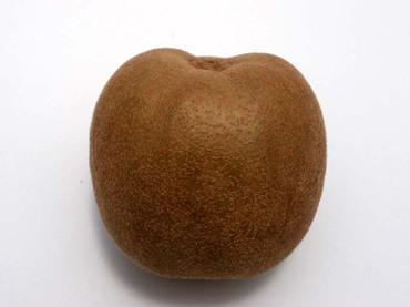 Kiwi_apple06_2