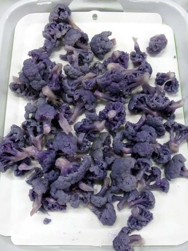 E_purple02