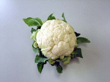 Cauliflower01