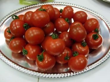 Tomatomaturi3602
