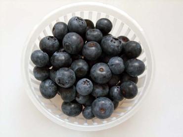 Blueberry_ehime02