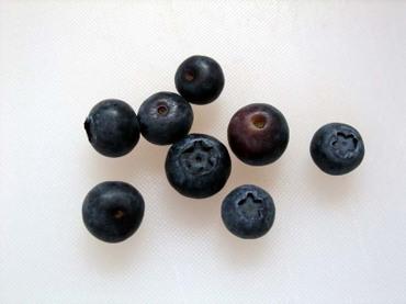 Blueberry_ehime03