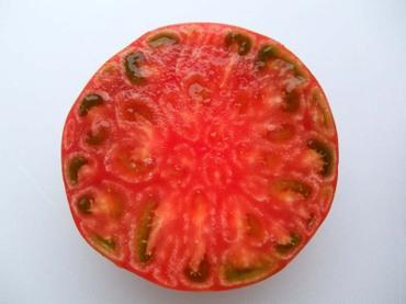 Fruitstomato06_2