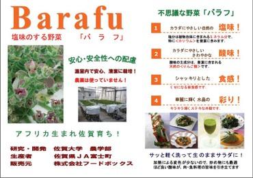 Barafu12