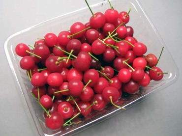 Sourcherry01