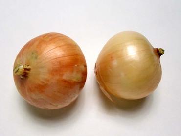 Onion02