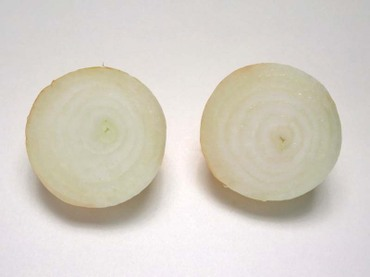 Onion03