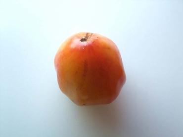 Orangerussian117_02
