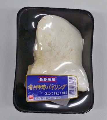 10yukirei01
