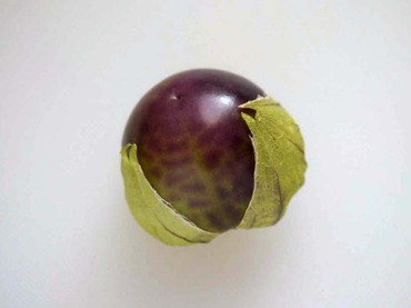 Purple_tomatilloa03_2