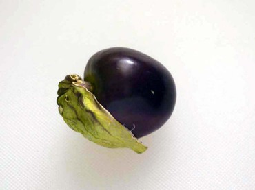 Purple_tomatillob06