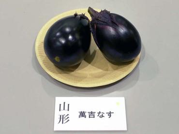 Yamagata_mankichi_2