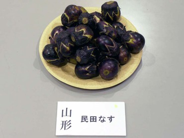 Yamagata_minden01