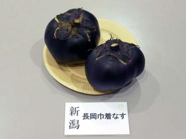 Niigata_kinchaku01