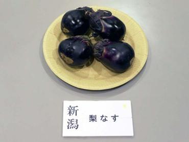 Niigata_nasi01