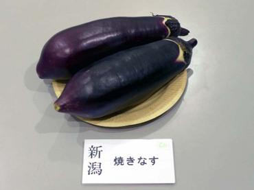 Niigata_yaki01