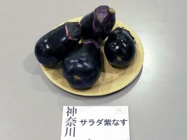 Kanagawa_salad01