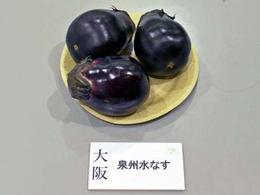 Osaka_sensyu01