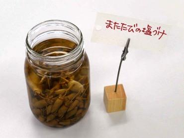 10matatabi_siozuke01